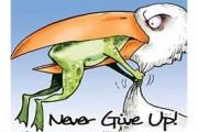 هرگز تسلیم نشو