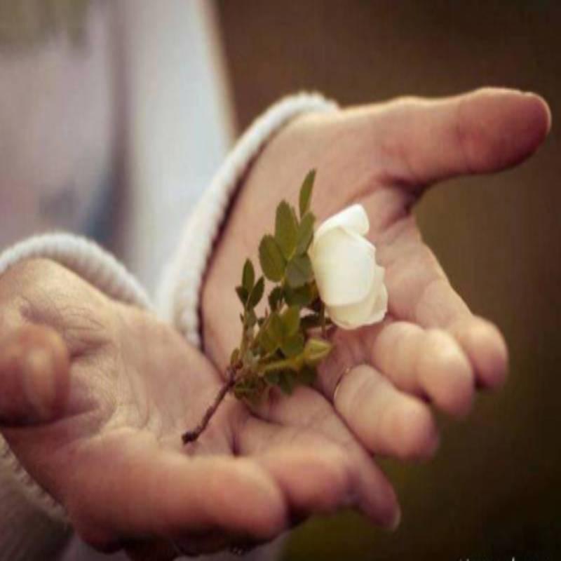 مهربانی با دیگران